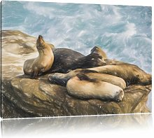 A Group of Sea Lions in a Bay Graphic Art Print on