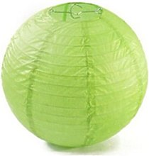A Liittle Tree Lime Paper Lanterns (10x12)