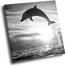 A107 Sunset Dolphin Black White Square Animal