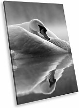 A529 Swan Cool Black White Animal Portrait Canvas