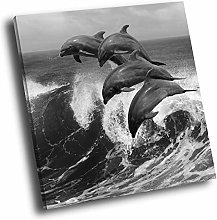 A756 Dolphin Waves Black White Square Animal
