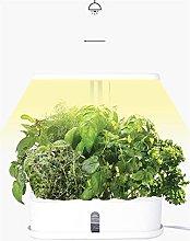 AAAALP Garden Plant Flower Herb Pot Container