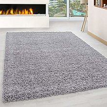 Abaseen Large Small Carpet Silver Grey Rug Floor