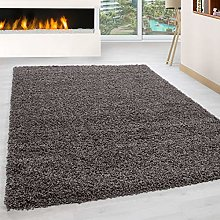 Abaseen Large Small Carpet Taupe Rug Floor Size