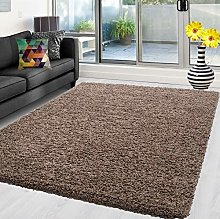Abaseen Shaggy Rug Non Shed Thick Fluffy For