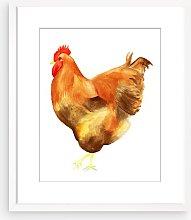 Abigail Banks - Chicken I Framed Print & Mount, 58