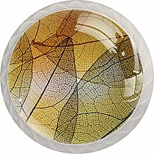 Abstract Transparent Yellow Leaves, Modern