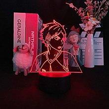 Acrylic Anime LED 3D Night Light USB Battery