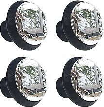 Adorable Baby Raccoons 4PCS Round Drawer Knob Pull