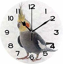 Adult Gray CockatielModern Silent Silent Clock