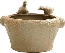 aedouqhr Creative Duck Hydroponic Plant Ceramic