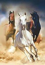 AG DESIGN Horse Racing Fleece Photo Wallpaper for Living, Bedroom, Dining Room, Kitchen, 90 x 202 cm, FTN V 2953, Multicoloured