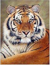 Aidemei Animals Tiger Diamond Painting Diamond