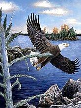 Aidemei Full Diamond Painting Eagle Animals