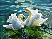 Aidemei Full Diamond Painting Swan Cross Stitch