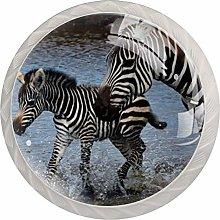 AITAI Wild Animal Zebra Round Cabinet Knob 4 Pack