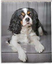 ALAZA Cavalier King Charles Spaniel Dog Shower