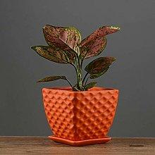 Alqn Ceramic Flower Pot Simple Style Flower Green