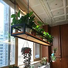 Alqn Hanging Cube Floating Shelves Ceiling-Type