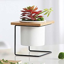 Alqn Iron Frame Wooden Frame Ceramic Pot Succulent