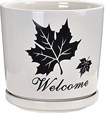 Alqn Simple Flower Pot Printed One-Piece Tray
