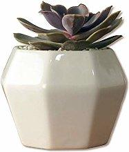 Alqn White Ceramic Flower Pot Personality Small