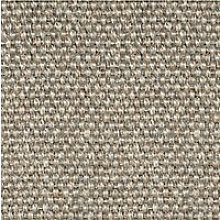 Alternative Flooring Sisal Metallics Carpet