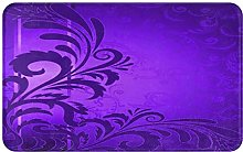 AMIGGOO Entrance Rug Floor Mats, Purple Background