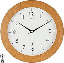 AMS Clock, Silver, 29 x 5 x 204 cm