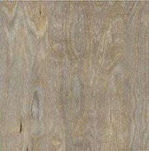 Amtico Spacia Wood Luxury Vinyl Tile Flooring