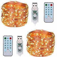 Aneagle Garde Light,10M 100LED USB Operated