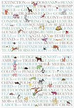 Animal Collective Nouns PLACEMATS by MOLLYMAC