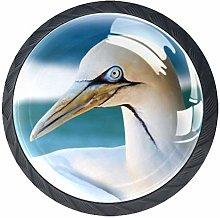 Animal Seagull Crystal Drawer Handles Furniture