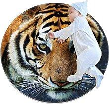 Animal Tiger, Round Area Rug Pattern Round
