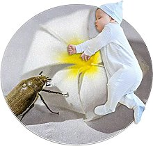 Anti-Slip Area Rug Beetle Round Carpet Polyester
