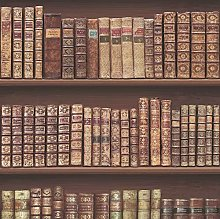 Antique Bookcase Library Bookshelf Wallpaper,