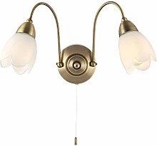 Antique Brass & Frosted Glass Twin Wall Light with