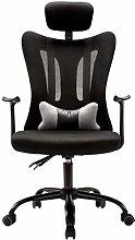 AOIWE Ergonomic Office Chair Lumbar Support Mesh