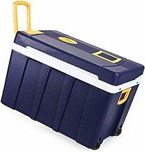 AOLI Electric Coolbox 50L 12V Dc 220V Ac