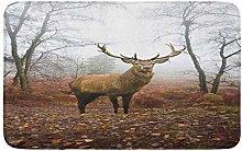 AoLismini Bath Mat Beautiful of Red Deer Stag in