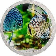 Aquarium Fish Cabinet Door Knobs Handles Pulls