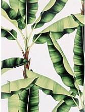 Arthouse Musa Green Wallpaper