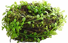 Artificial Bird Nest Green Leaf Leaves Brown Faux