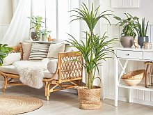 Artificial Potted Dracaena Green Synthetic