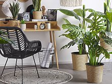 Artificial Potted Monstera Plant Green and Black