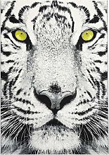 ASPECT Leader-A mesmerising Tiger Print Rug with