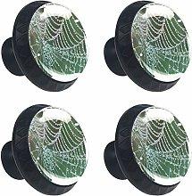 ATOMO 4pcs Cobweb with rain Drop Crystal Glass