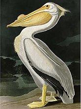 Audubon Birds White Pelican Painting Premium Wall