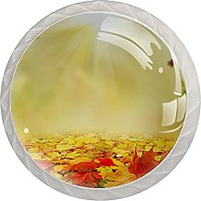 Autumn 4PCS Cabinet Door Knobs Round Shape Pull