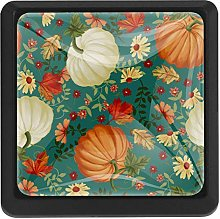 Autumn Pumpkins Teal Square Cabinet Knobs Cabinets